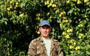 Саженцы груши сорт Чижовская
